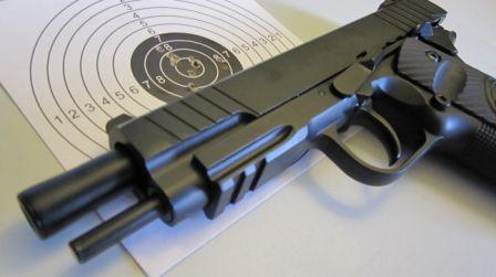 Gun and Target - Falkvinge