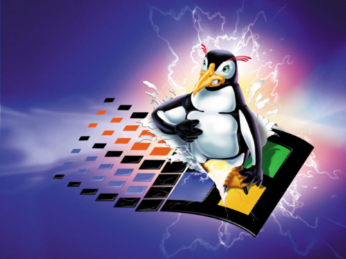 linuxpenguinFighter