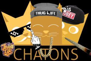 En parlant de parodie... Le logo CHATONS déjà parodié (par Steph
