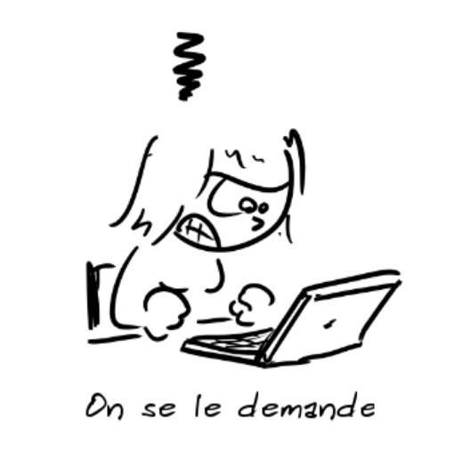 Un personnage furax devant son ordinateur dit : on se le demande