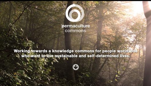 page d'accueil du site permaculture commons avec un slogan sur fond de forêt illuminée de rayons de soleil : Œuvrer à l'édification d'un patrimoine commun de connaissances pour les peuples du monde entier qui veulent vivre une vie durable et autodéterminée.