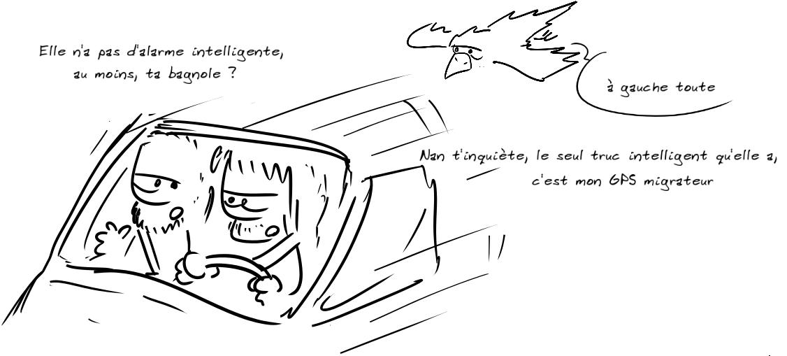 Deux personnages dans une voiture. Le premier : elle n'a pas d'alarme intelligente, au moins, ta bagnole ? Le second : nan t'inquiète, le seul truc d'intelligent qu'elle a, c'est mon GPS migrateur. Un oiseau, au dessus : à gauche toute
