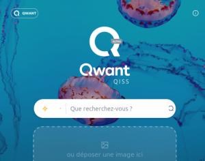 copie d'écran de Qwant Qiss (recherche d'images)