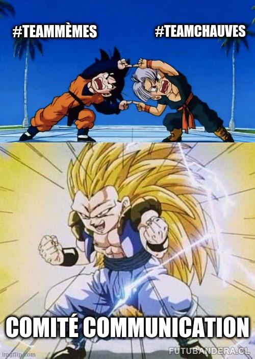 Mème de fusion de Trunks et Son Goten (personnages de Dragon Ball), où la team mèmes fusionne avec la team chauves pour donner le comité communication