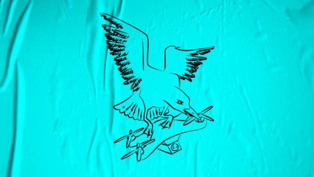 Dessin d'un goéland attaquant un drone — lien vers la Quadrature du Net