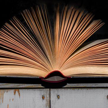 Mémorandum Covid-19 pour du libre et de l'open en conscience: enseignements et impulsions futures